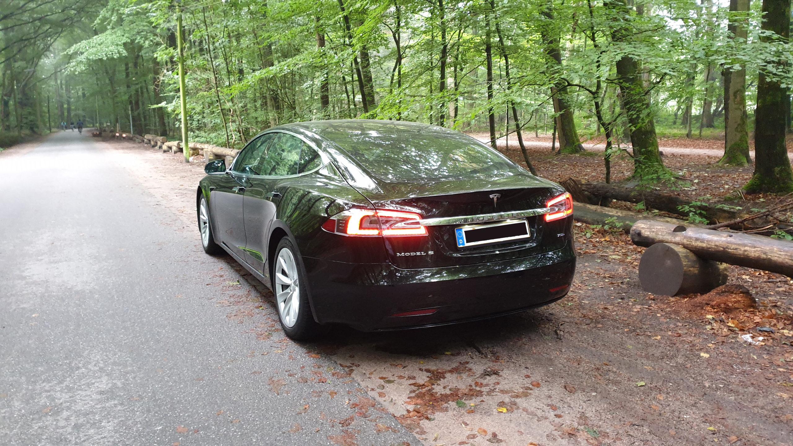 Tesla Model S in Niendorfer Gehege (game reserve), Hamburg