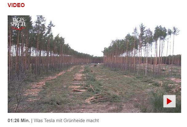The deforestation at Giga Berlin with the caption in German: what Tesla is doing with Grüneheide